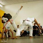 Capoeira abada jogaki spectacle dansant emajinarium free spirit
